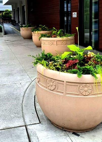 large commercial planters