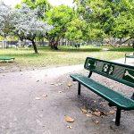 Dog park equpment - paws bench
