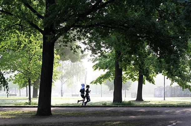 park joggers